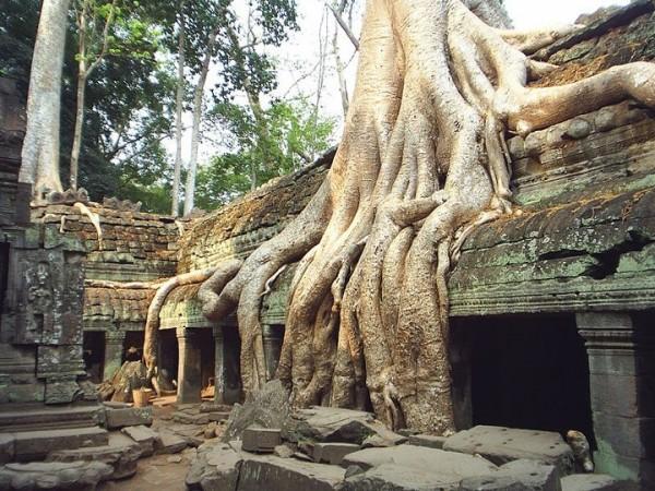 Angkor-Vat-asselineau-4