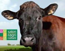le-Salon-International-de-l-Agriculture