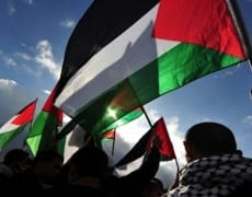 palestine-642x350